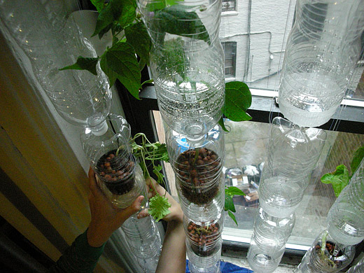 Hydroponic Gardening Part 2 The Pots
