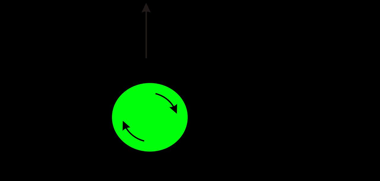 Image result for magnus effect